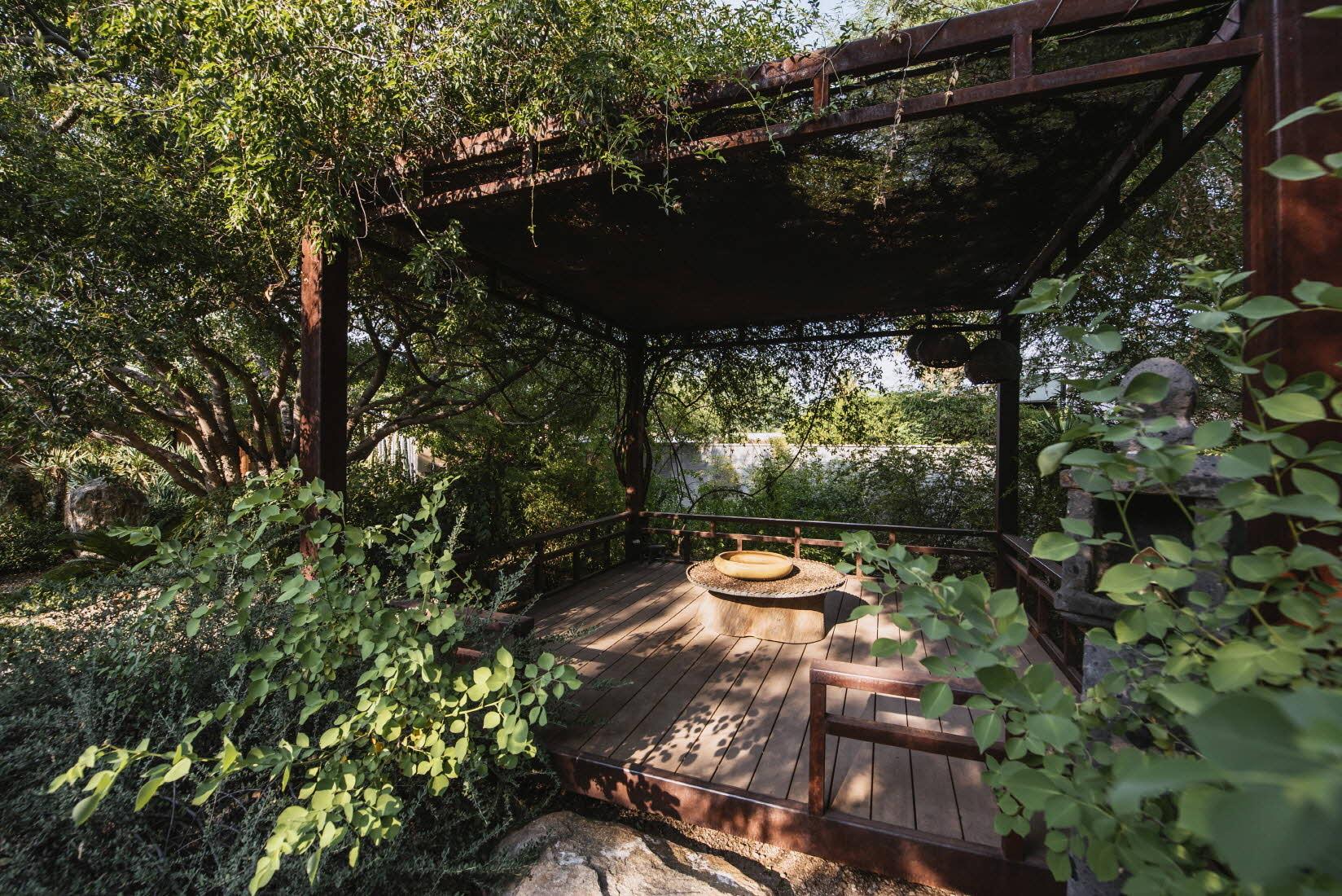 Korean-Sonoran Garden